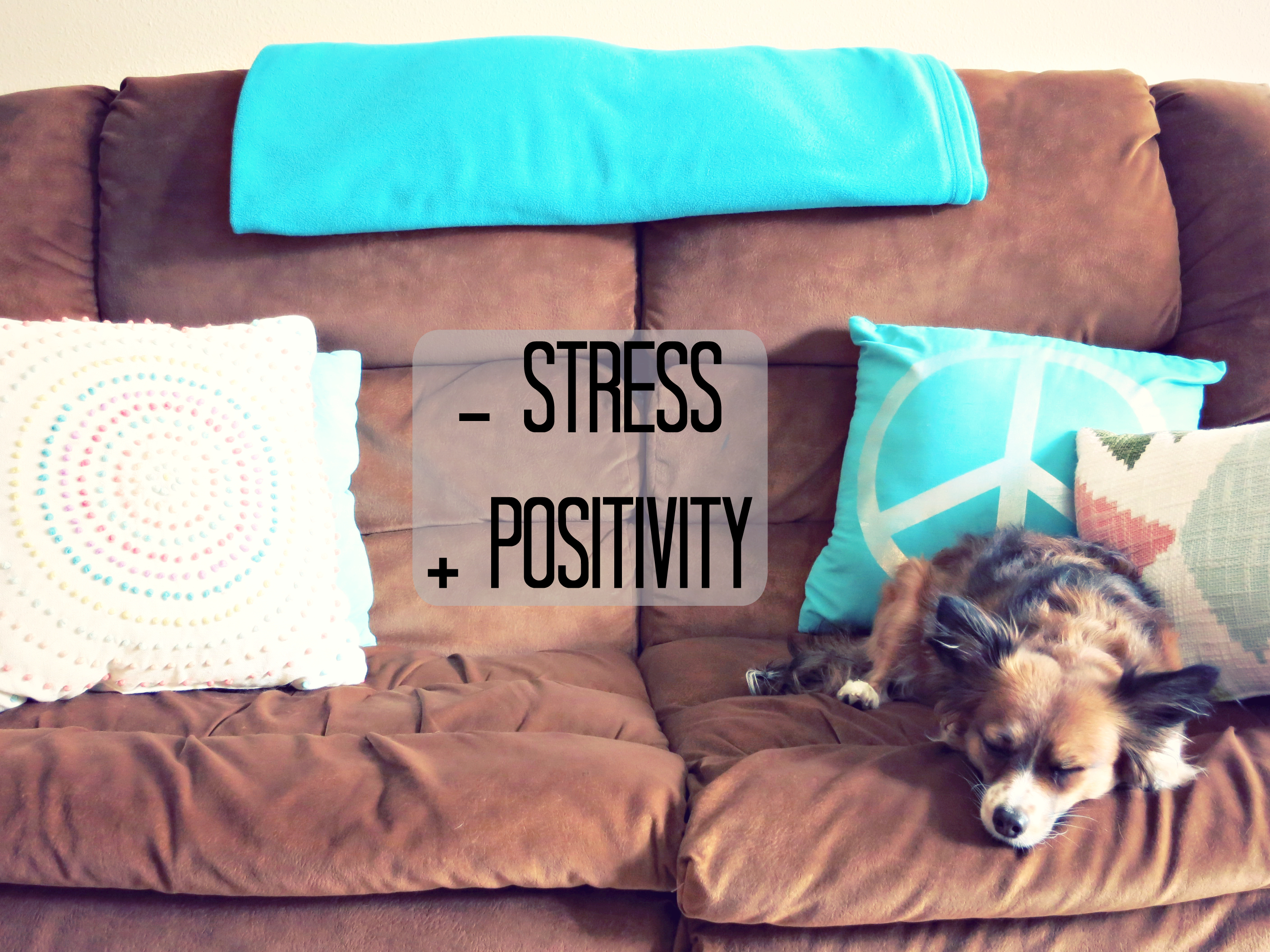 Get Rid of Stress and Add Positivity